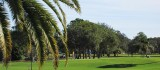 Dunedin Golf Club